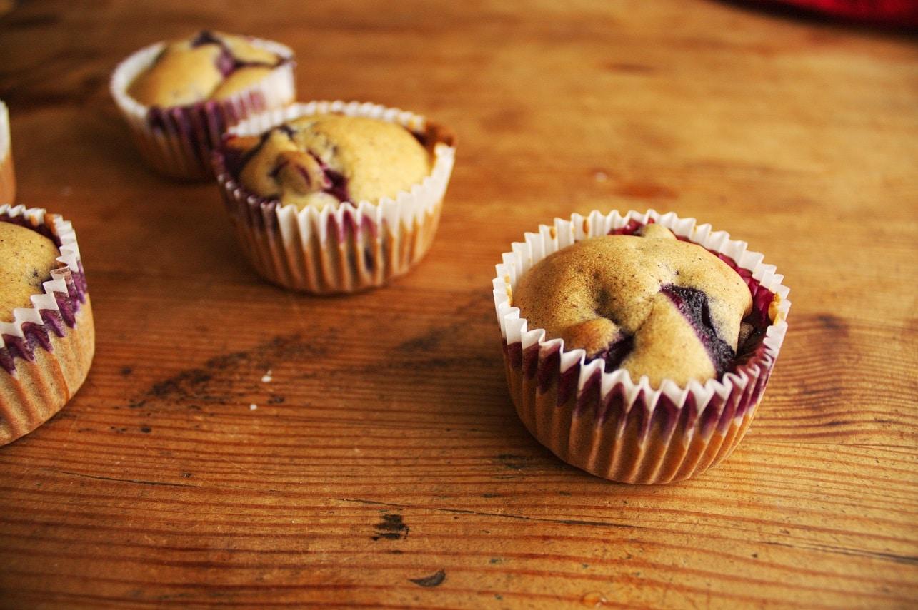 Blaubeer Muffins-glutenfrei-vegan