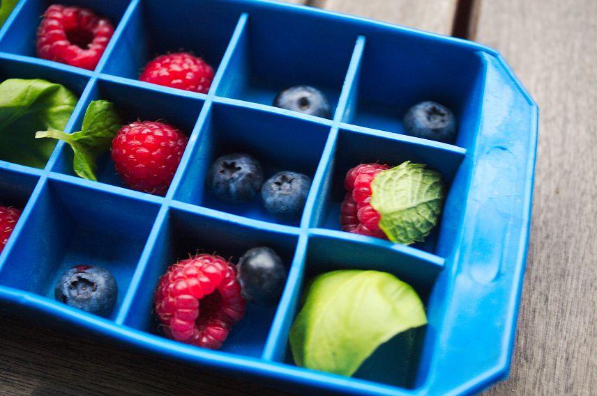 früchte im eiswürfelbehälter