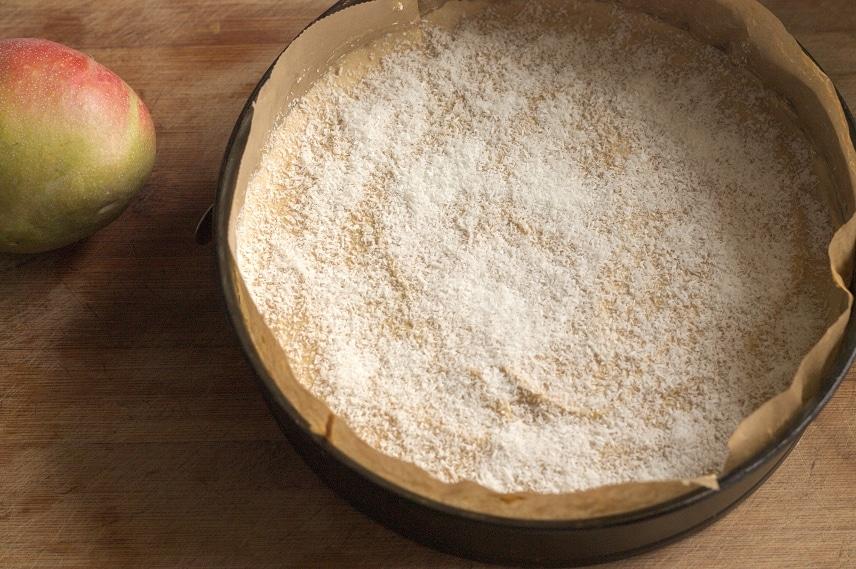 kokosraspeln für kuchen