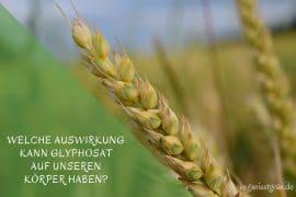 Glyphosat Auswirkungen auf den Körper