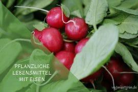 Pflanzliche Lebensmittel mit Eisen